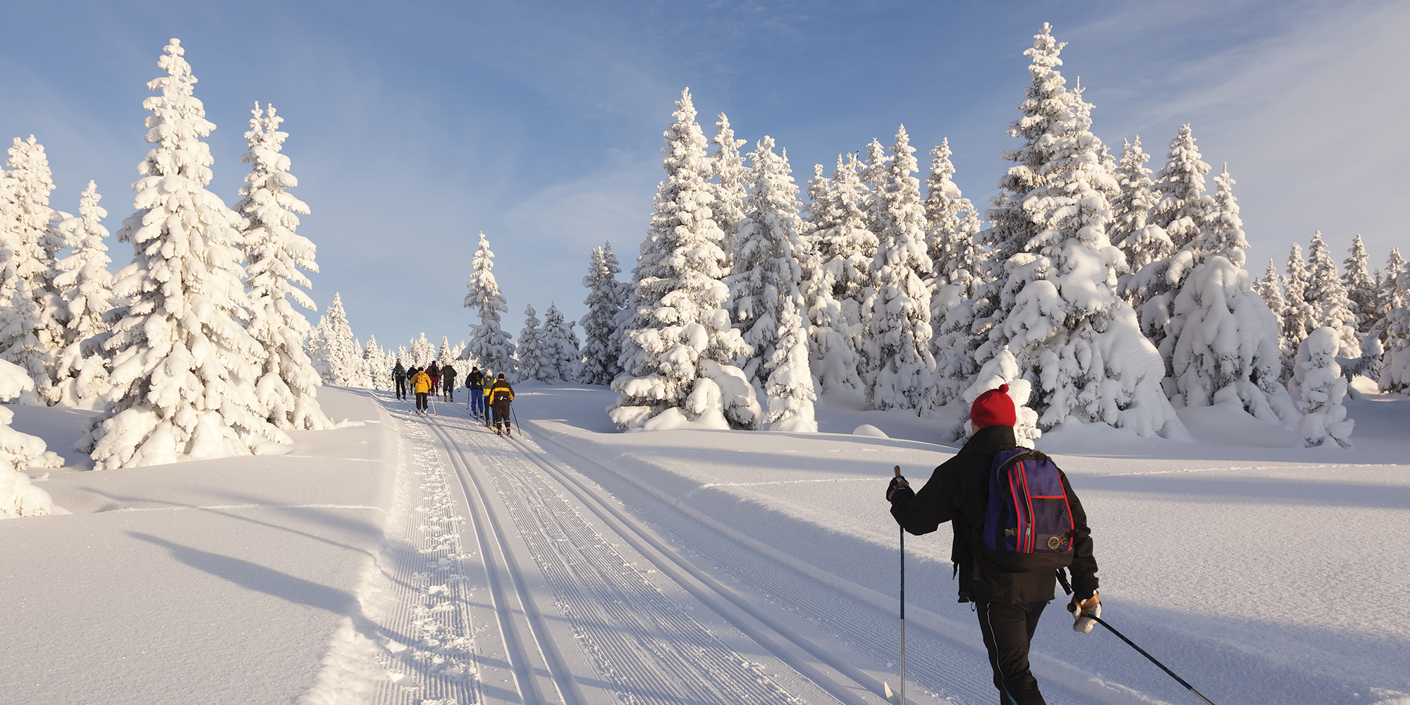 Skiing Trip To France